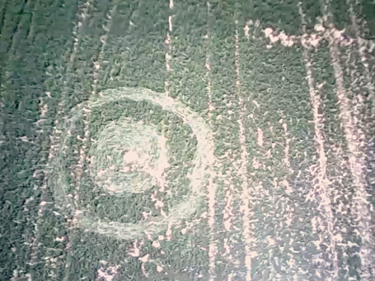 30ft wide, please see attached video., Drone footage of a homemade crop-circle built using rope and wood with my father, Joe Gonzales, and narrated by my cousin, Sofia Romero