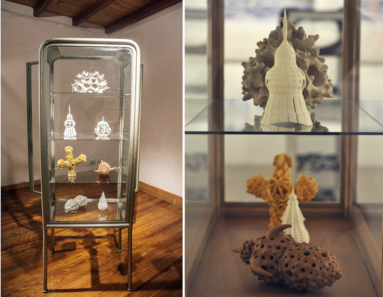 The different objects in the cabinet are representations of illustrations from Ernst Haeckel (XIX century naturalist). Three are 3D printed and three done by hand (unfired clay and wax). How much is gained/transformed in each translation exercise?